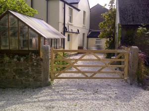 back gate_access for disabled