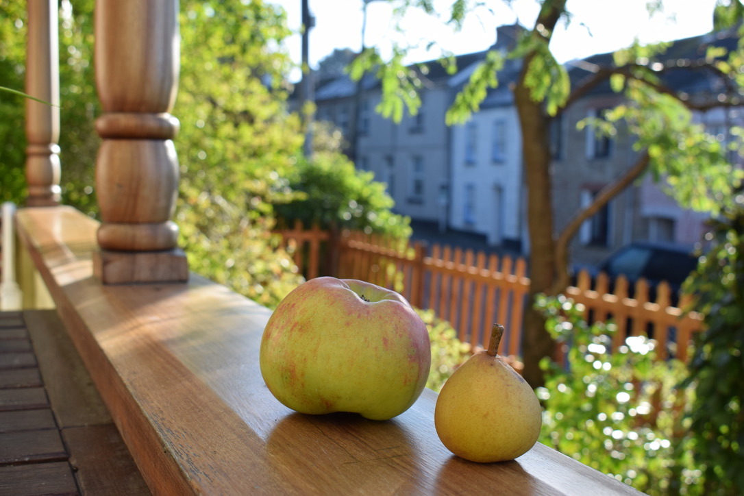 apples on the veranda