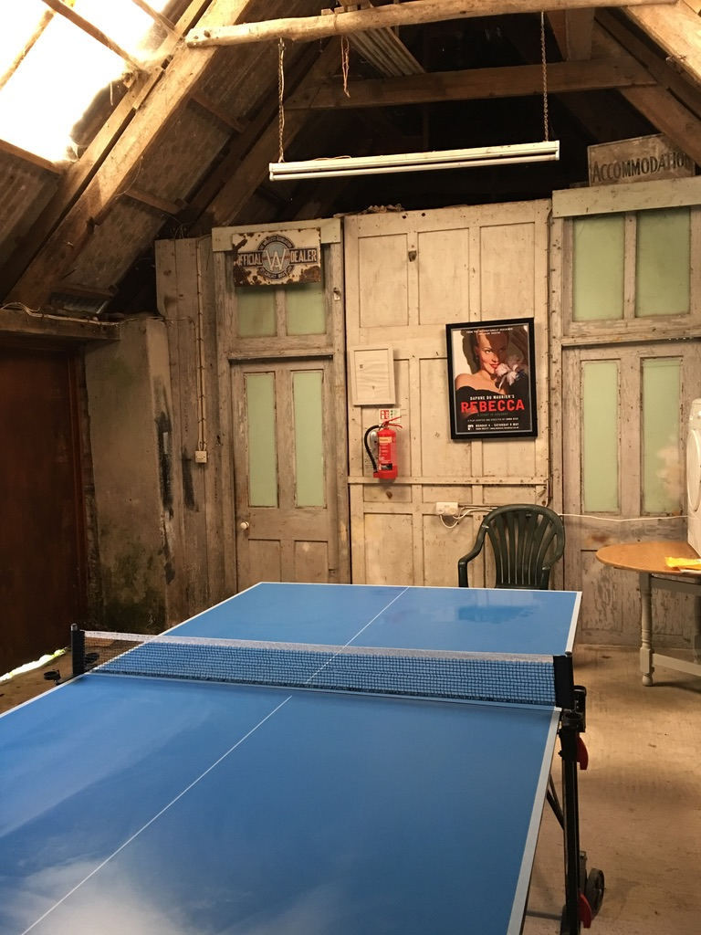 Table tennis at The Gables