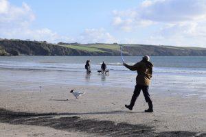 Par Beach for dogs