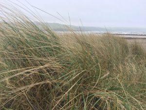 Par sands dunes